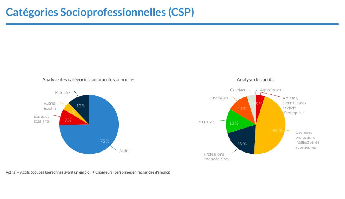 Qualification du flux piéton_catégories socioprofessionnelles
