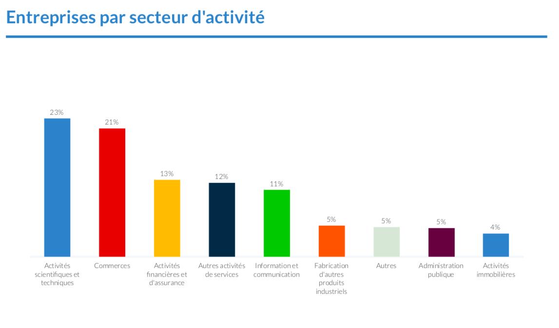 Qualification du flux piéton_entreprises par secteur dactivité